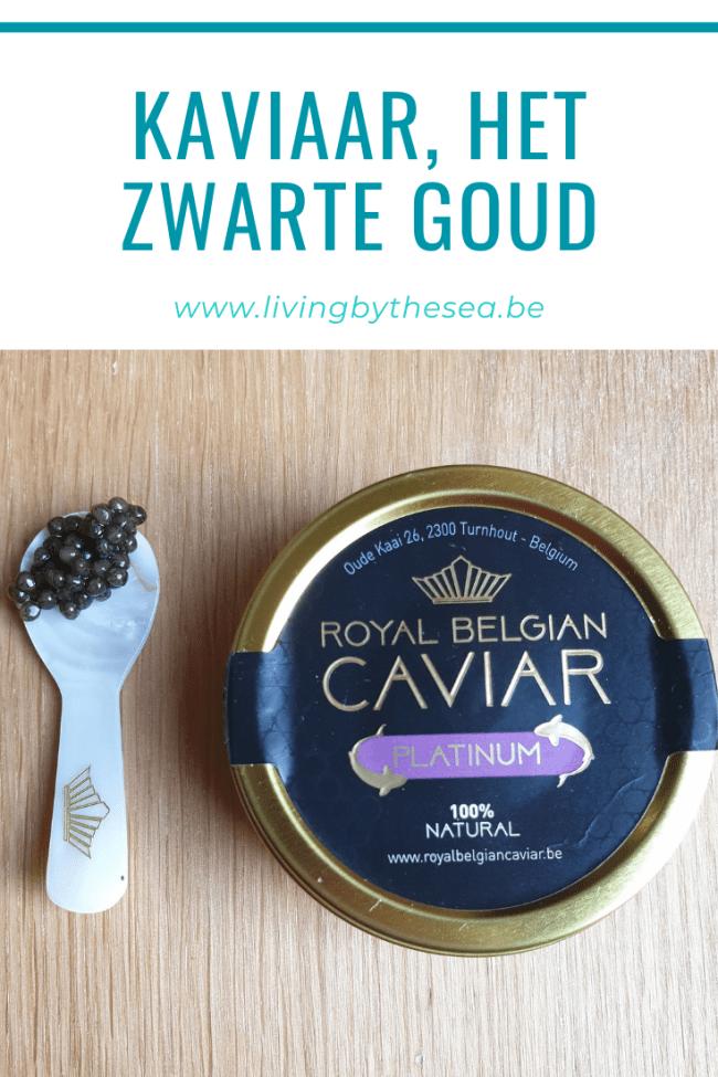 Kaviaar, het zwarte goud