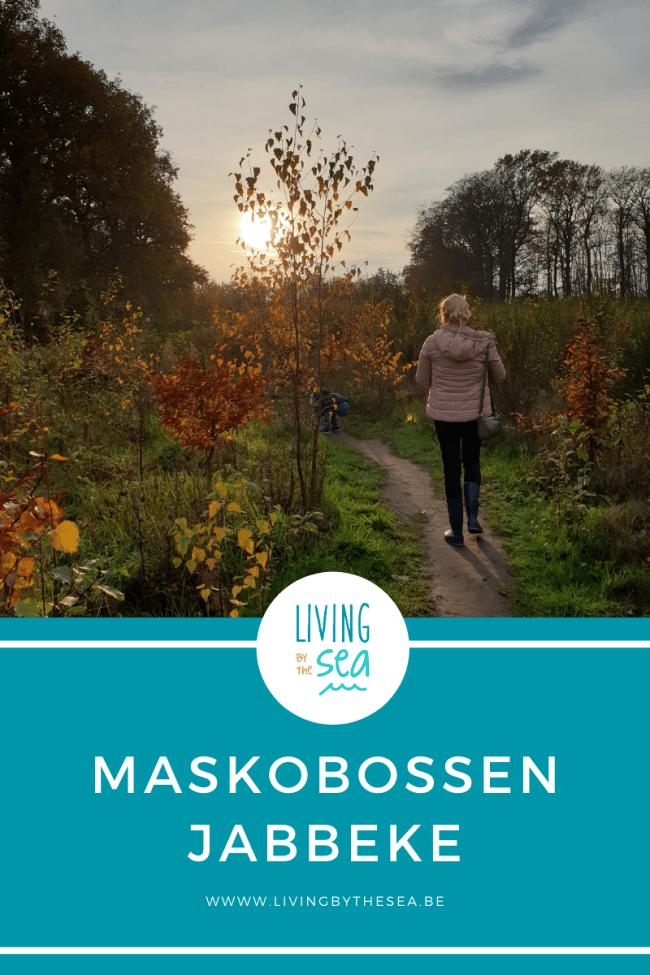 Wandelen in de Maskobossen in Jabbeke