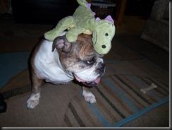 Dragon hat_082012