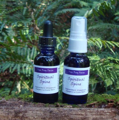 Spiritual Spine Flower Essence Blend