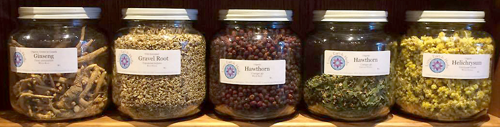 Living Earth Herbs Store