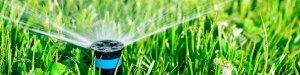 Irrigation and Lawn Sprinkler Systems in Calgary Alberta