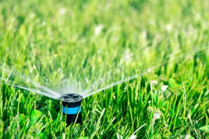 Calgary Lawn Irrigation Systems