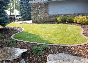 Living Earth Landscapes - Front Yard Landscaping Ideas - Edging