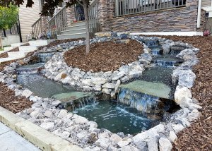 Living Earth Landscapes - Front Yard Landscaping Ideas - Waterfall