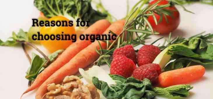 9 great reasons for choosing organic