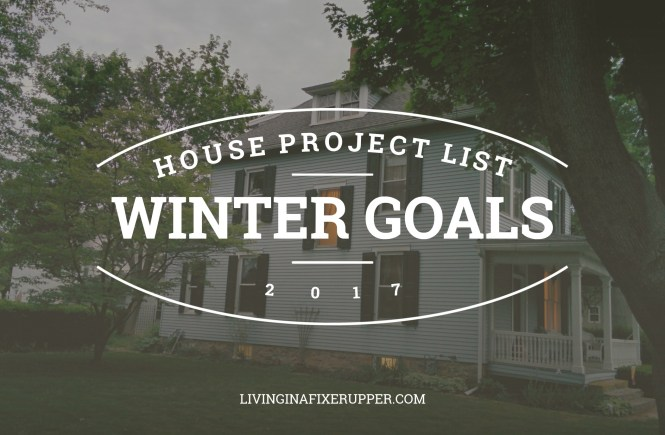 winter house project goals