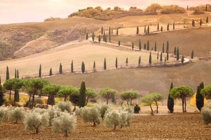 Tuscan landscape photo ©iStockphoto.com/Rolphus
