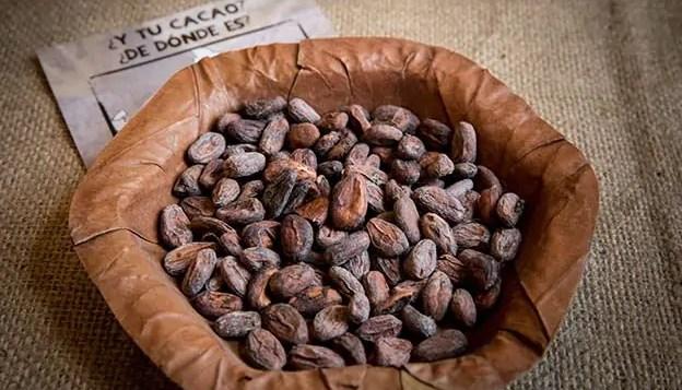El Cacaotal Chocolate Shop