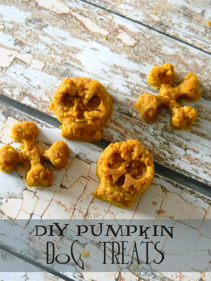 DIY Pumpkin Dog Treats