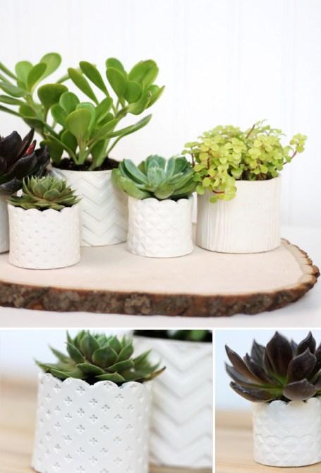 decor-inspiration-succulent-planters-ideas-3