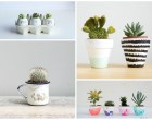 decor-inspiration-succulent-planters-ideas-feature