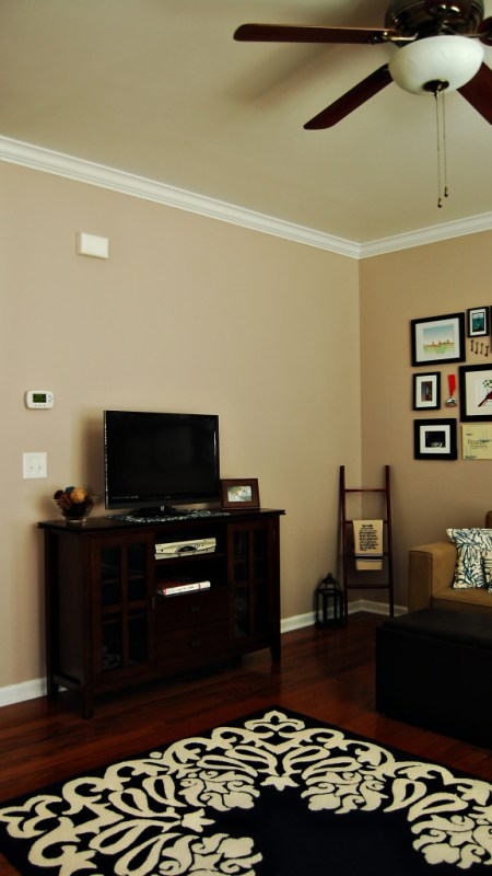 Living on Saltwater - Living Room Paint - Indecision - Olympic - Collage Wall