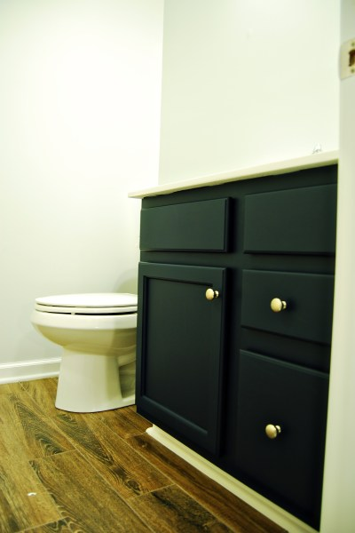 Living on Saltwater - Guest Bathroom Redo - Vanity - Royal Navy - Thin Ice