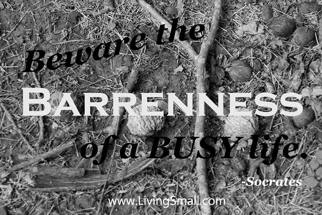 Beware-the-barreness-of-a-busy-life