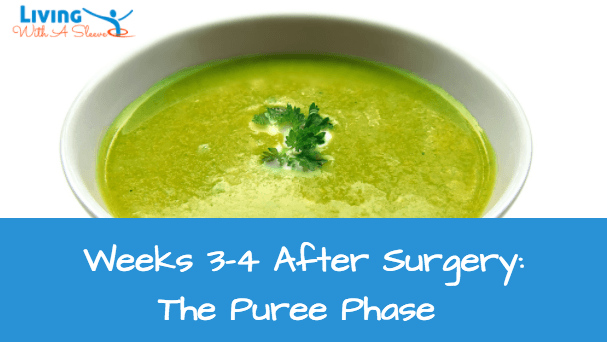 97 soft food recipes after hernia surgery hiatal hernia diet week 3 4 after surgery what to eat during the puree phase forumfinder