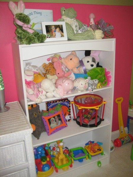 Playroom bookcases