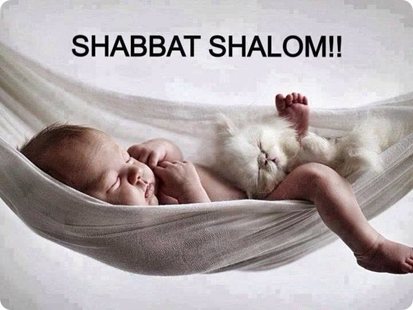 What's So Great About Shabbat Anyway??