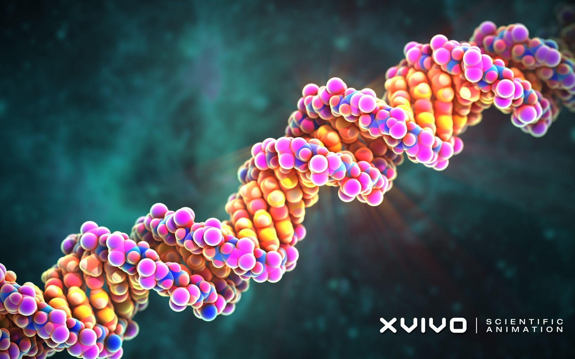The Art of Torah, DNA and Destiny