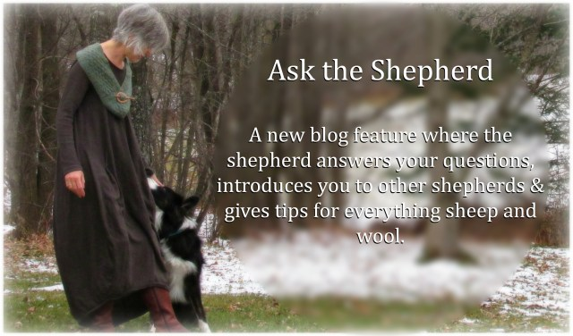 Ask the Shepherd