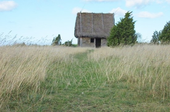 Thatched Roofed Barn on Faro
