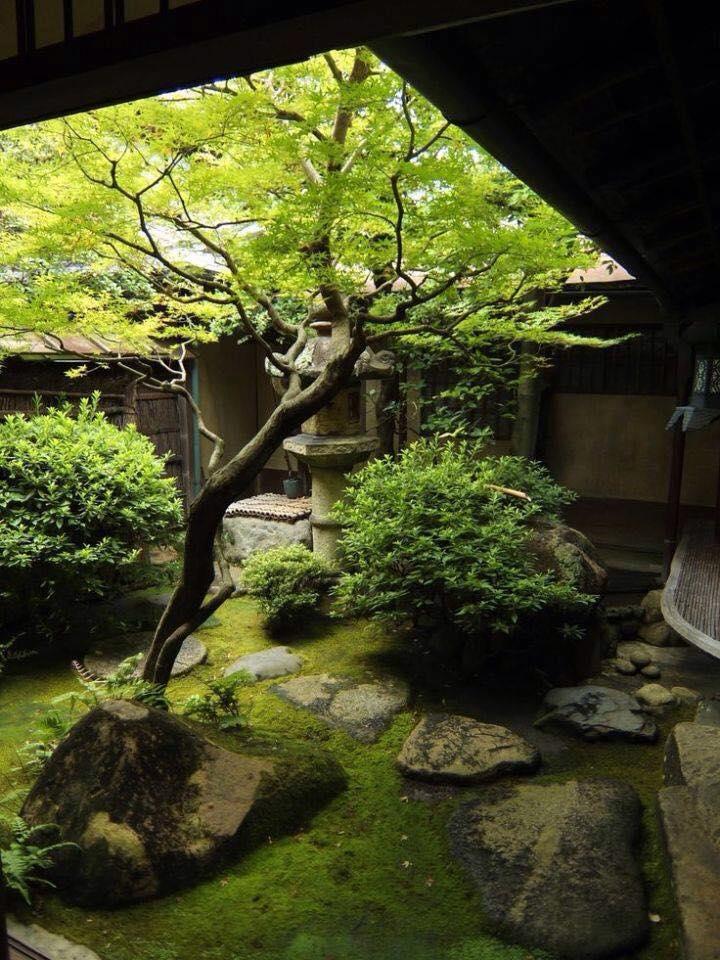 courtyard 07