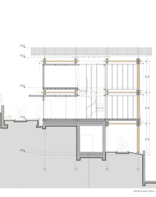 BAMBOO HOUSE _STUDIO CARDENAS10_section_AA