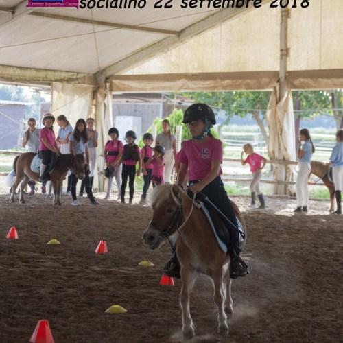 giochi pony