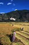 bhutan_08