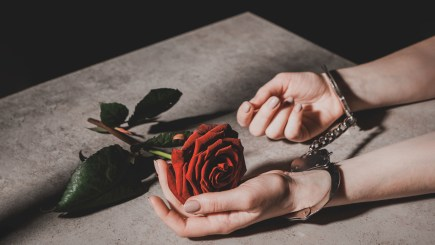 Picture of a woman in handcuffs caressing a red rose.