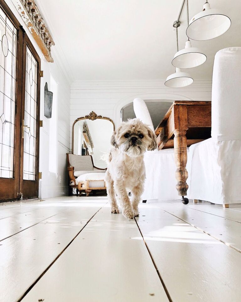 Painted Floor Update Amp Faq S Do We Love It Or Hate It