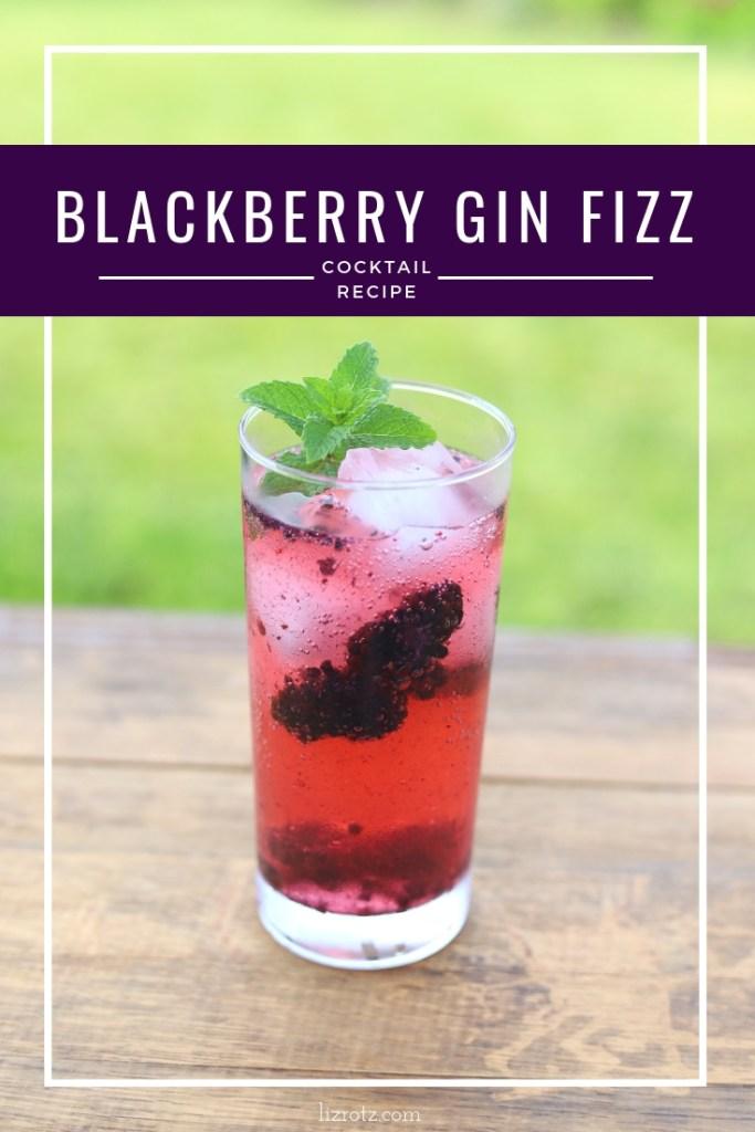 Blackberry Gin Fizz Cocktail Recipe