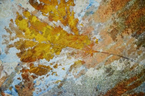 Digital collage (c) 2012 Liz Ruest