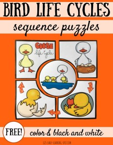 Bird Life Cycle Puzzles: Goose, Snowy Owl and Puffin