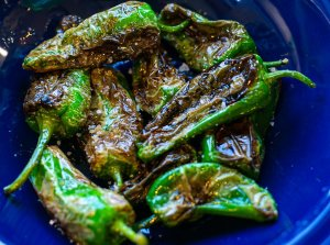 charred Padron peppers served in a dish with flaky sea salt