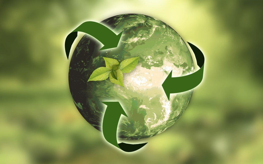 Environment & Recycling Policy