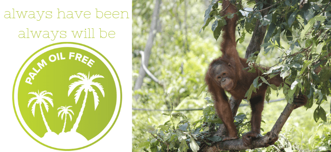 palm oil free always have been always will be