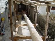 Arbeiten am Baum 23.04.2005 - 05