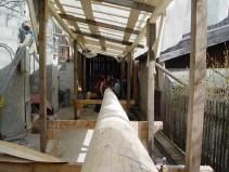 Arbeiten am Baum 23.04.2005 - 07