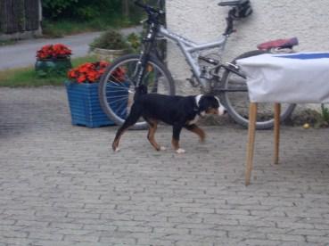 LaJuZi Helferfeier 30.07.2006 - 28