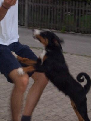 LaJuZi Helferfeier 30.07.2006 - 44