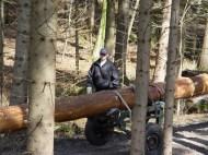 Maibaum Reinholden 26.03.2005 - 22