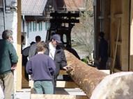 Maibaum Reinholden 26.03.2005 - 51