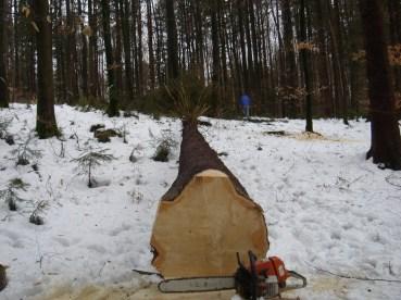Maibaum Umschneiden 12.02.2005 - 16