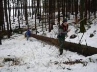 Maibaum Umschneiden 12.02.2005 - 19