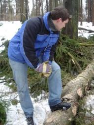 Maibaum Umschneiden 12.02.2005 - 31