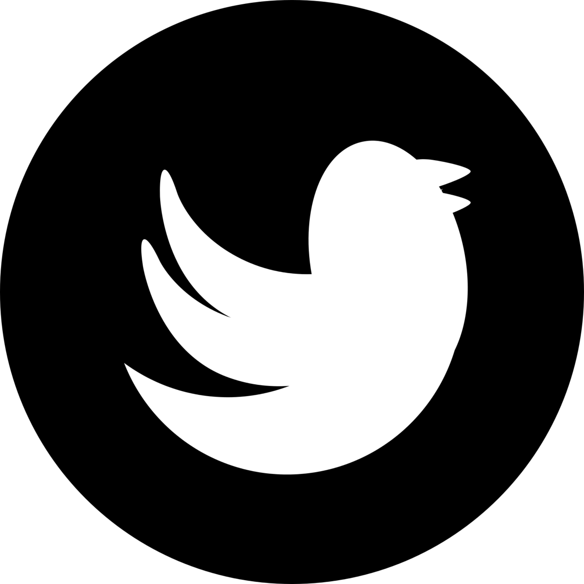 Image result for twitter icon image hd