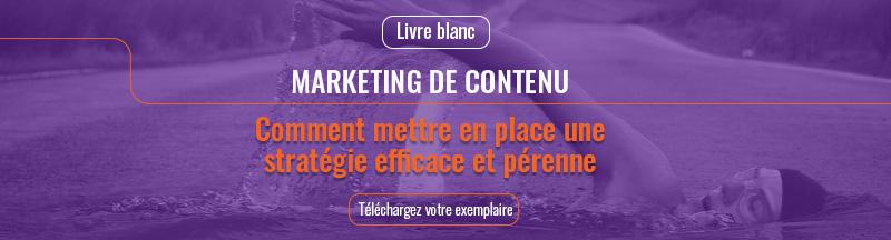 Livre blanc : comment mettre en place une stratégie de contenu efficace et pérenne - Télécharger votre exemplaire