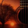 sunset guitar