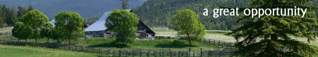 old farm waiting for the llama sanctuary